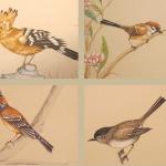 Uccellini dipinti per decorazione murale